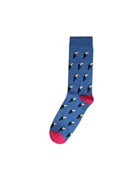 Зображення  чол. Шкарпетки